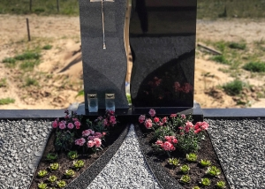 kapo apzeldinimas augalais