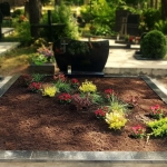 vienos dalies paminklas su pasodintais spalvotais daugiamečiais augalais