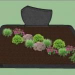 preliminarus augalų sodinimo planas