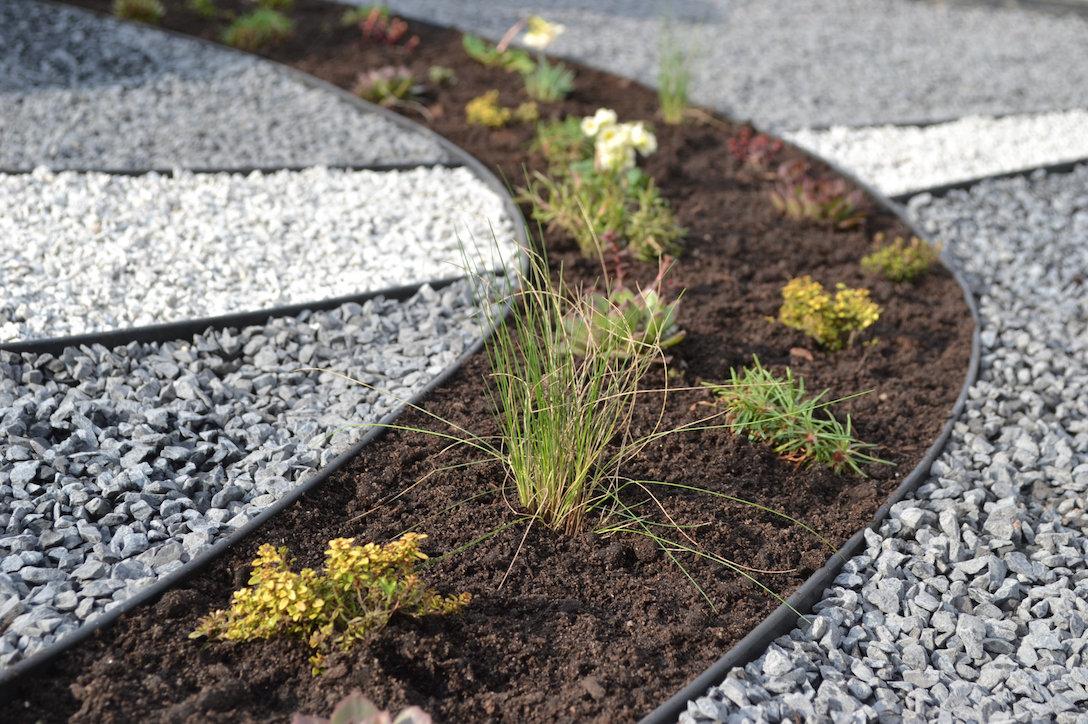 Kapavietės tvarkymo dizaino nuotrauka su kapo dekoravimu įvairiais augalais ir įkomponuotu juodu paminklu Panevėžyje