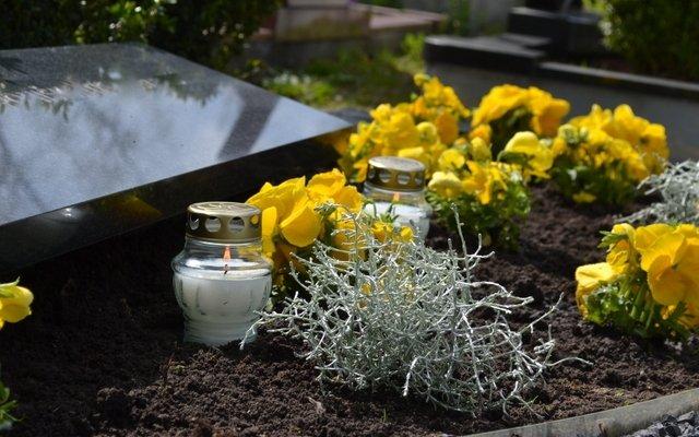 Kapai apželdinti ryškiaspalvėmis gėlėmis po kapų priežiūros darbų