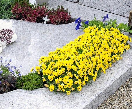 Gėlių dekoracija - paminklas
